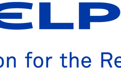 Delphi company logo
